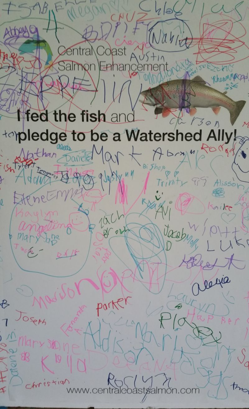 Look at all the young people who pledged to be a Watershed Ally
