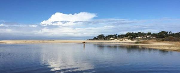 Carmel River Habitat Enhancement