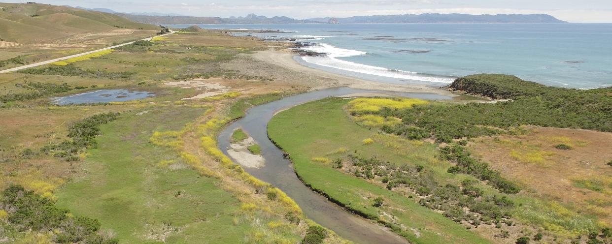 Villa Creek Estuary Restoration